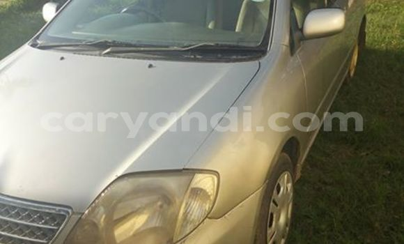 Buy Used Toyota Corolla Other Car in Kabwe in Zambia