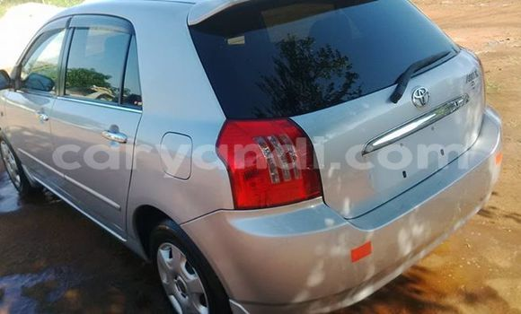 Buy Used Toyota Allex Silver Car in Ndola in Zambia
