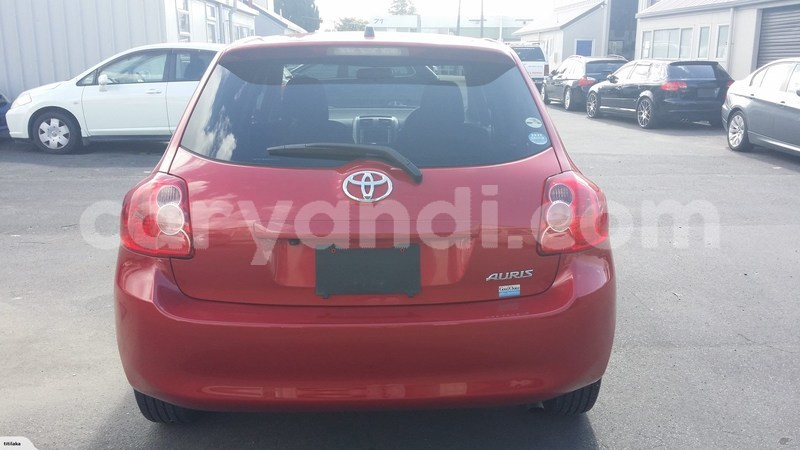 Big with watermark auris...
