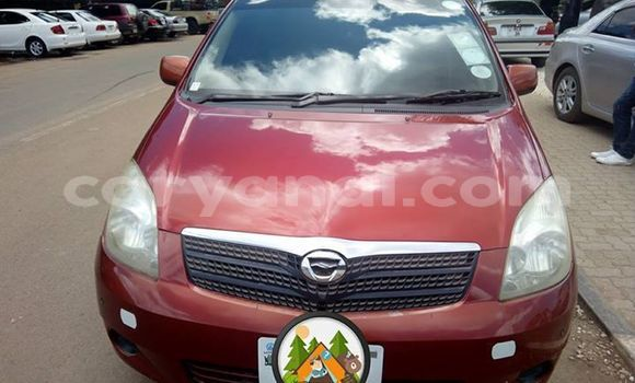 Buy Used Toyota Spacio Red Car in Lusaka in Zambia