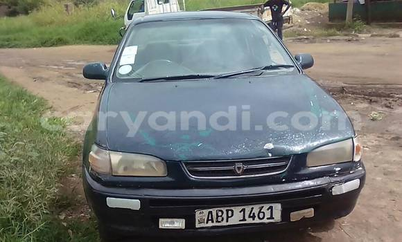 Buy Used Toyota Corolla Green Car in Livingstone in Zambia