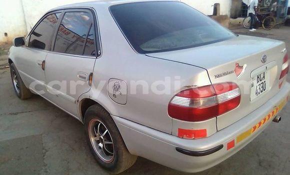 Buy Used Toyota Corolla Silver Car in Ndola in Zambia