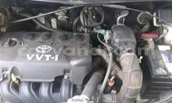 Buy Used Toyota Runx Other Car in Mansa in Luapala