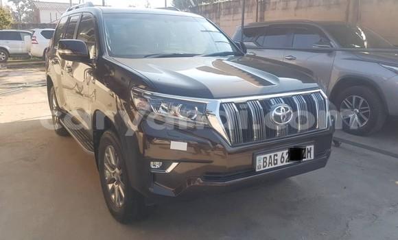 Buy Used Toyota Land Cruiser Prado Black Car in Lusaka in Zambia