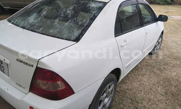 Buy Used Toyota Corolla White Car in Ndola in Zambia