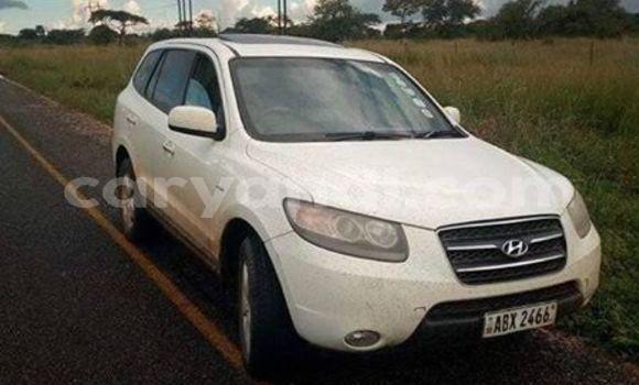 Buy Used Hyundai Santa Fe White Car in Lusaka in Zambia