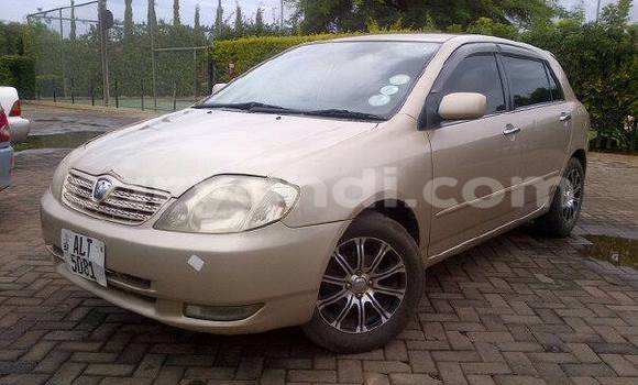 Buy Used Toyota Allex Other Car in Chipata in Zambia