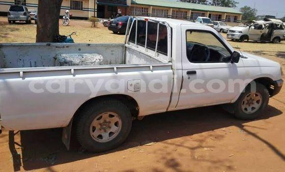 Buy Used Nissan Hardbody White Car in Monze in Southern