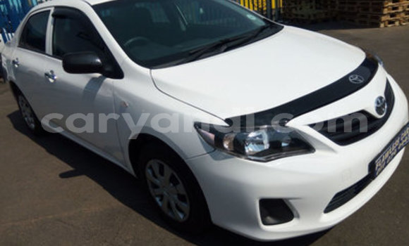 Buy Used Toyota Corolla White Car in Katete in Eastern