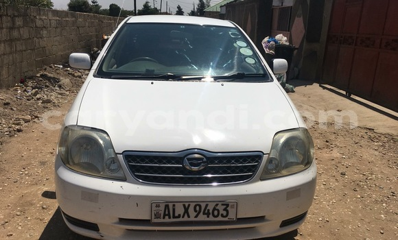 Buy Import Toyota Corolla White Car in Lusaka in Zambia