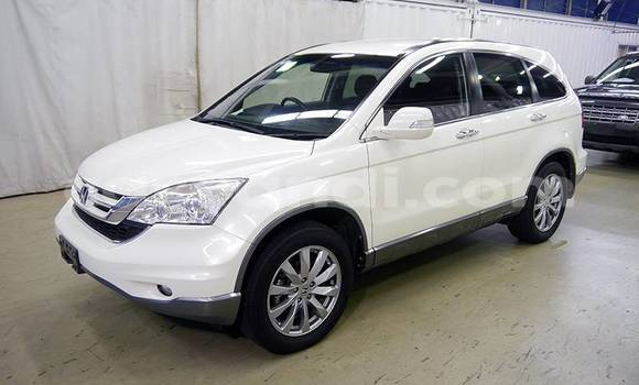Buy Import Honda CR–V White Car in Lusaka in Zambia