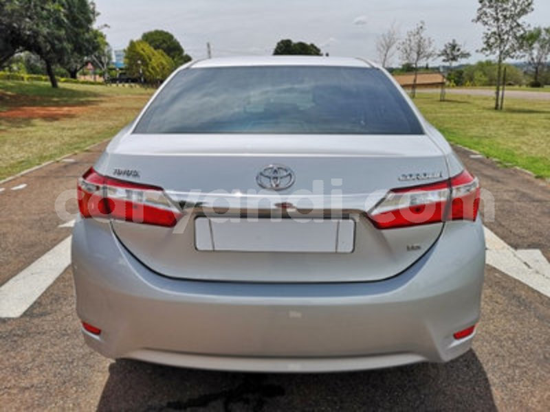 Big with watermark toyota corolla 7