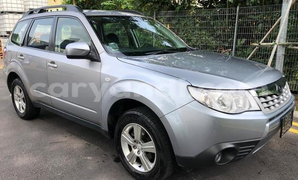 Buy Used Subaru Forester Silver Car in Lusaka in Zambia