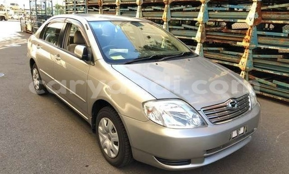 Buy Import Toyota Corolla Beige Car in Lusaka in Zambia