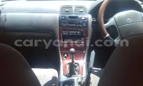 Buy Used Nissan Cefiro White Car in Lusaka in Zambia
