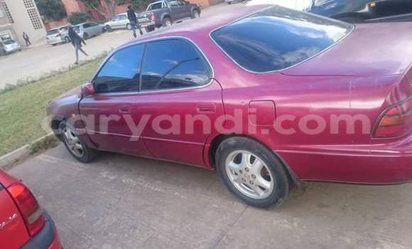 Buy Used Lexus ES 300 Red Car in Chingola in Zambia