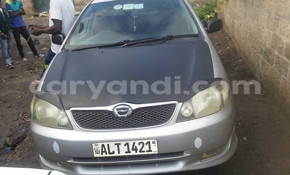 Buy Used Toyota Runx Other Car in Chipata in Zambia
