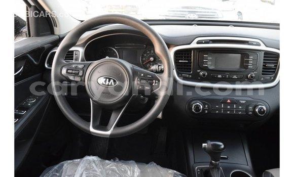 Buy Import Kia Sorento White Car in Import - Dubai in Zambia