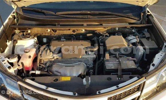 Buy Import Toyota RAV4 White Car in Import - Dubai in Zambia