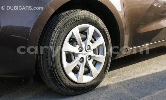 Buy Import Kia Rio Brown Car in Import - Dubai in Zambia
