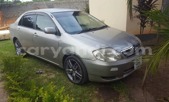 Buy Used Toyota Corolla Silver Car in Lusaka in Zambia