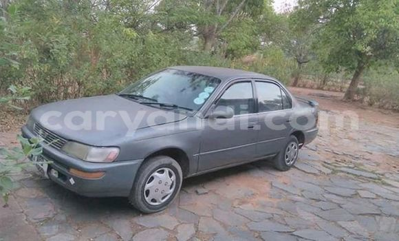 Buy Used Toyota Sprinter Other Car in Lusaka in Zambia
