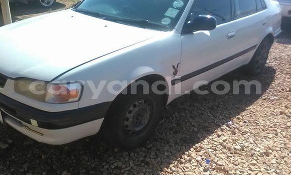 Buy Used Toyota Corolla II White Car in Lusaka in Zambia