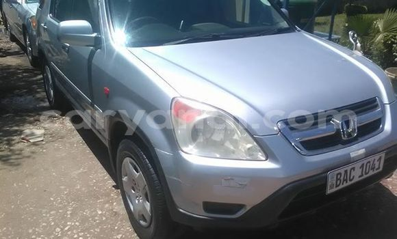 Buy Used Honda CR–V Silver Car in Lusaka in Zambia