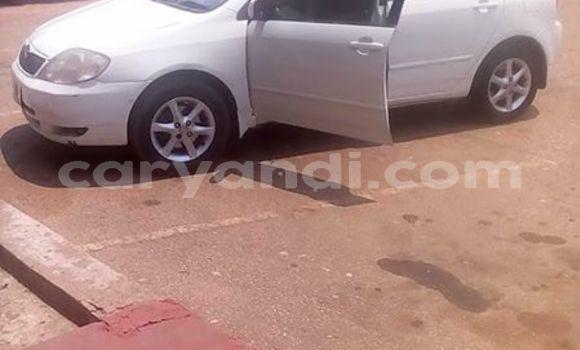 Buy Used Toyota Runx White Car in Kitwe in Zambia