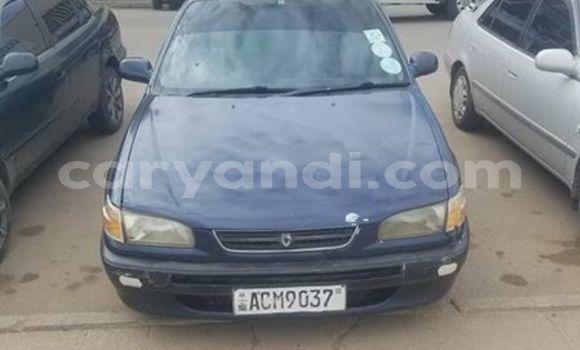 Buy Used Toyota Corolla Blue Car in Kitwe in Zambia