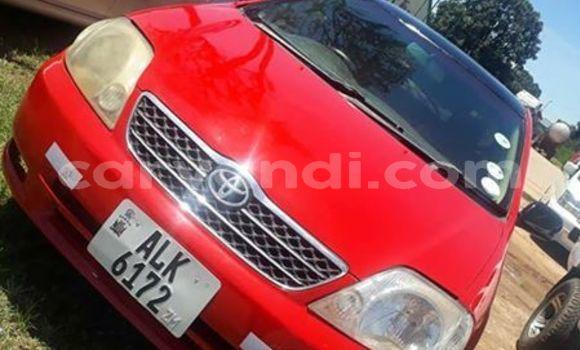 Buy Used Toyota Runx Red Car in Kitwe in Zambia