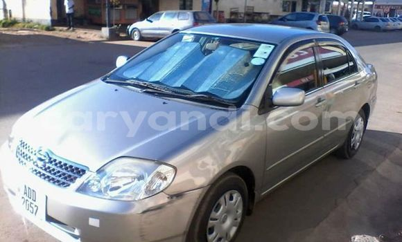 Buy Used Toyota Corolla Silver Car in Kitwe in Zambia