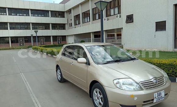 Buy Used Toyota Runx Beige Car in Lusaka in Zambia