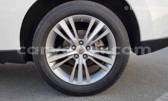 Buy Import Lexus RX 350 White Car in Import - Dubai in Zambia
