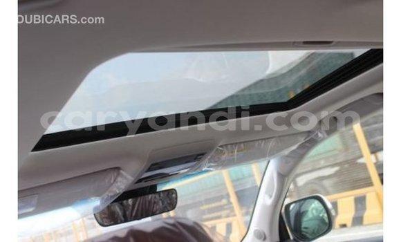 Tenga Imported Toyota Land Cruiser Chena Mota in Import - Dubai in Zambia