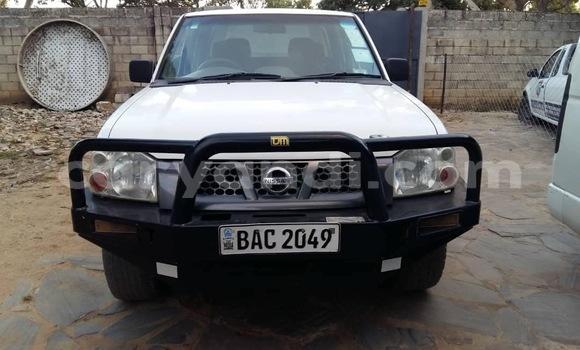Buy Used Nissan Hardbody White Car in Lusaka in Zambia