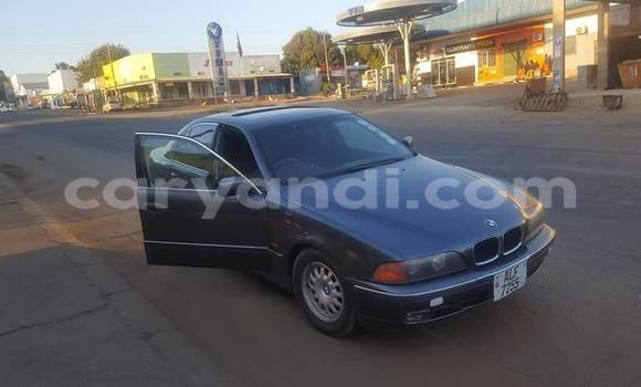 Buy Used BMW 5–Series Black Car in Chipata in Zambia