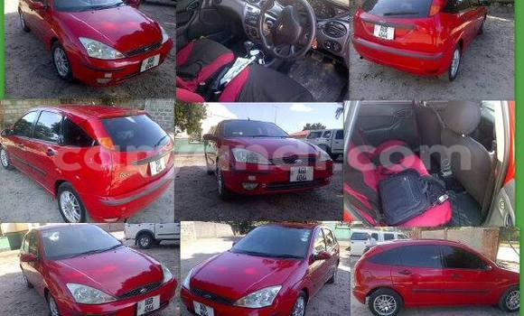 Buy Used Ford Focus Black Car in Chipata in Zambia