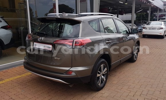 Buy Used Toyota RAV4 Other Car in Livingstone in Zambia