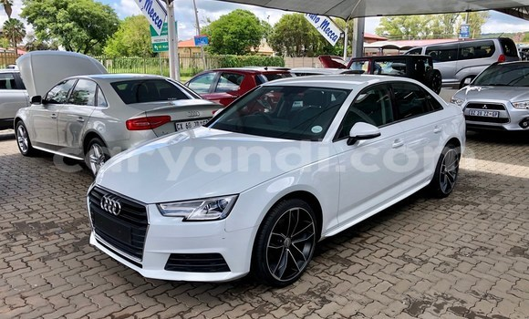 Buy Used Audi A4 White Car in Chingola in Zambia