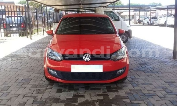 Medium with watermark vw8