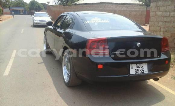 Buy Used Dodge Charger Black Car in Chipata in Zambia