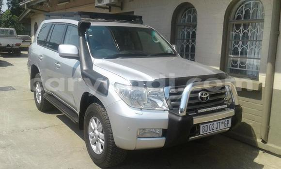 Buy Used Toyota Land Cruiser Silver Car in Chipata in Zambia