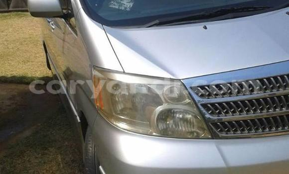 Buy Used Toyota Alphard Other Car in Chipata in Zambia