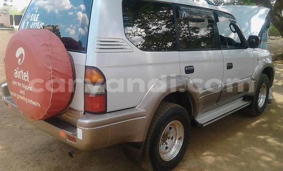 Buy Used Mitsubishi Pajero Silver Car in Chipata in Zambia