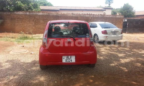 Buy Used Toyota Paseo Red Car in Chipata in Zambia