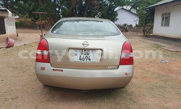 Buy Used Nissan Primera Other Car in Chipata in Zambia