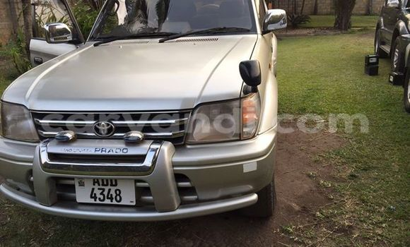 Buy Used Toyota Land Cruiser Prado Black Car in Chipata in Zambia
