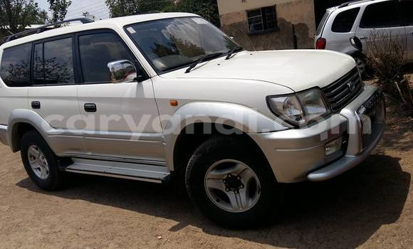 Buy Used Toyota Prado White Car in Chipata in Zambia