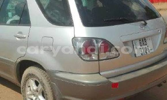 Buy Used Toyota Harrier Silver Car in Chipata in Zambia